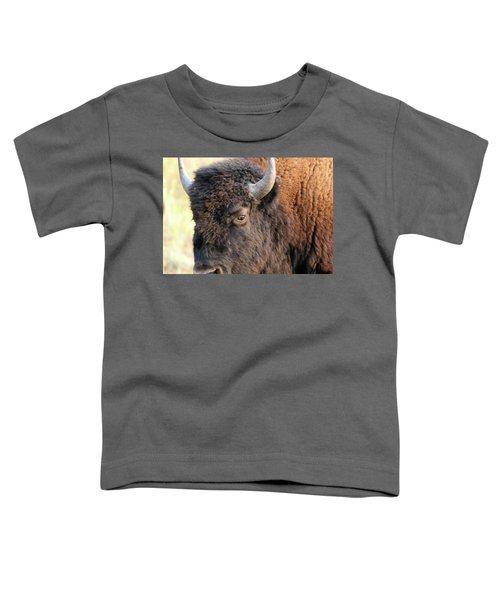 Bison Head Study Toddler T-Shirt