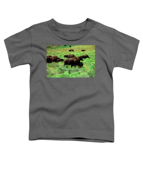 Bison2 Toddler T-Shirt