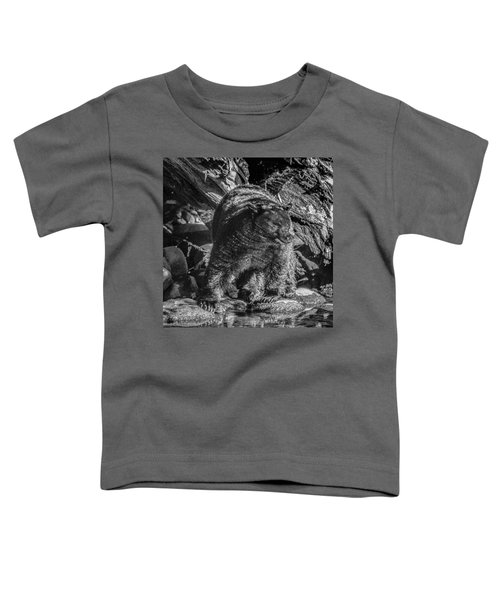 Black Bear Creekside Toddler T-Shirt