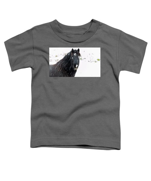 Black Horse Staring In The Snow Toddler T-Shirt