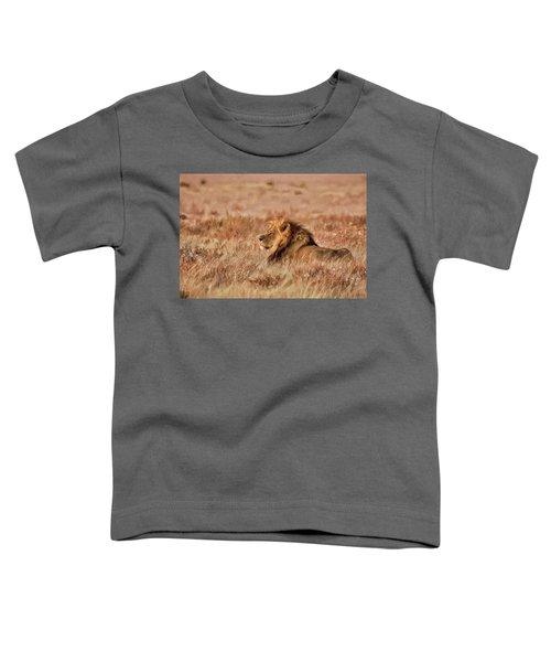 Black-maned Lion Of The Kalahari Waiting Toddler T-Shirt