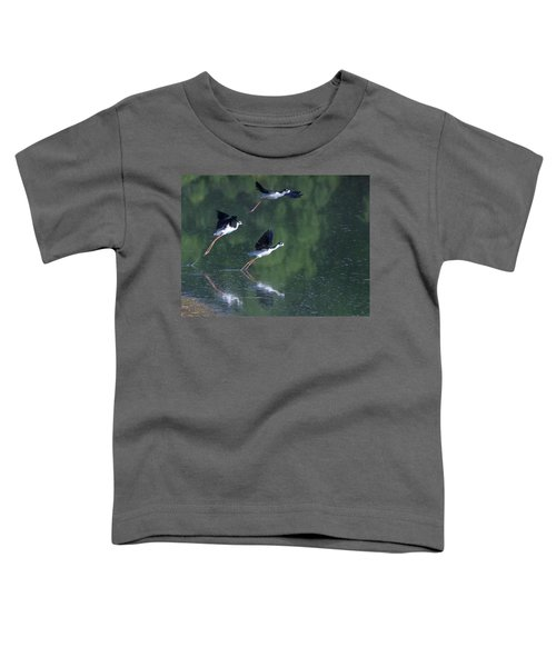 Black-necked Stilts 4302-080917-2cr Toddler T-Shirt