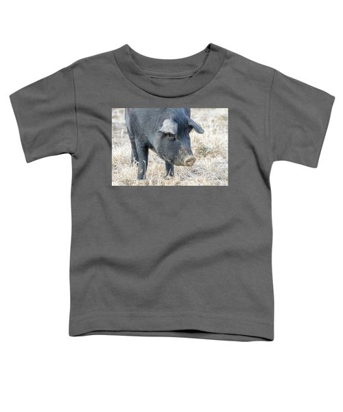 Toddler T-Shirt featuring the photograph Black Pig Close-up by James BO Insogna