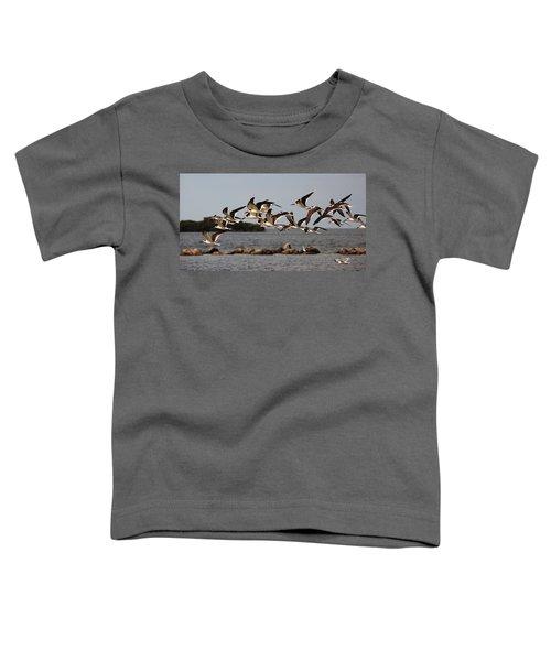 Black Skimmers In Flight Toddler T-Shirt