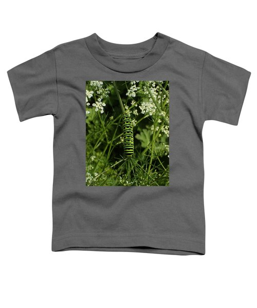 Toddler T-Shirt featuring the painting Black Swallowtail Butteryfly Caterpillar by Chholing Taha