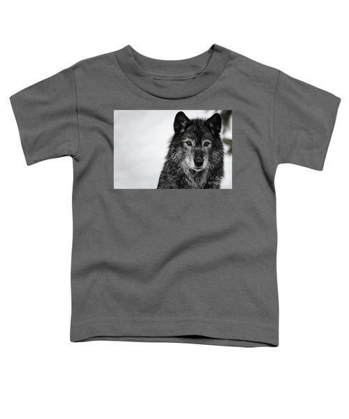 Black Wolf I Toddler T-Shirt