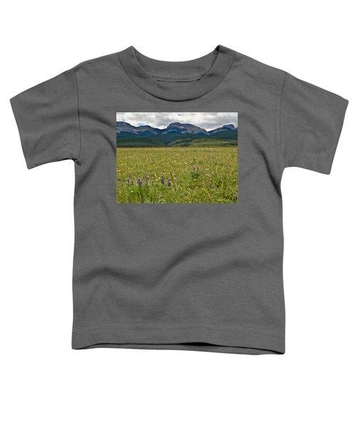 Blackleaf Canyon Toddler T-Shirt