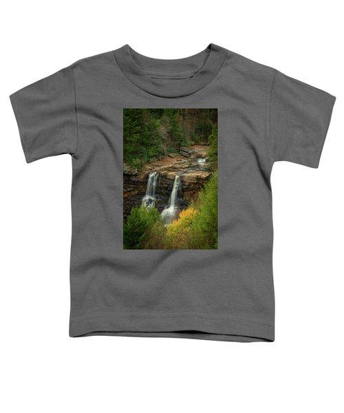 Blackwater Falls Toddler T-Shirt