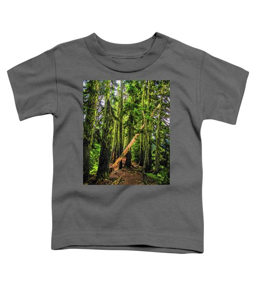 Blocked Trail Toddler T-Shirt
