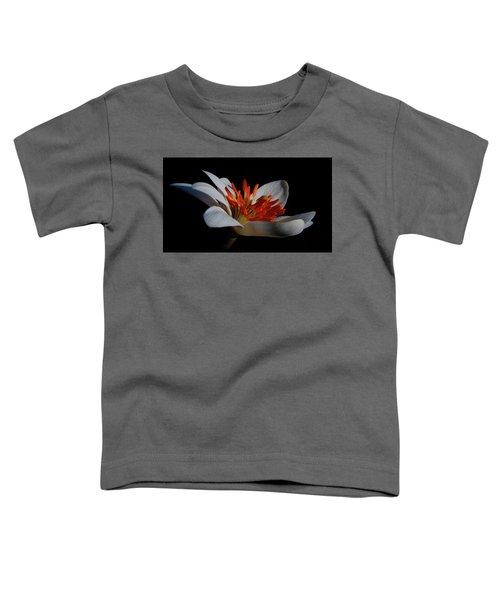 Bloodroot Art Toddler T-Shirt