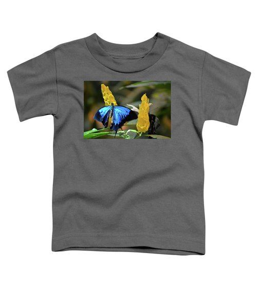 Blue Beauty Butterfly Toddler T-Shirt