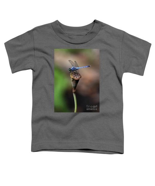 Blue Dragonfly Dancer Toddler T-Shirt