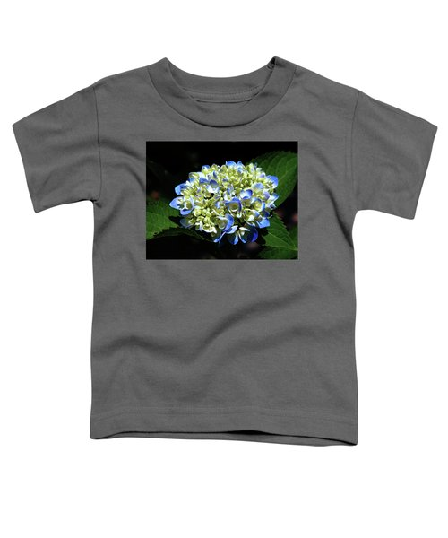 Blue Hydrangea Onstage 2620 H_2 Toddler T-Shirt