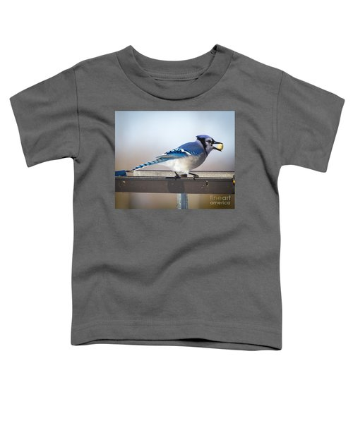 Blue Jay With A Mouth Full Toddler T-Shirt