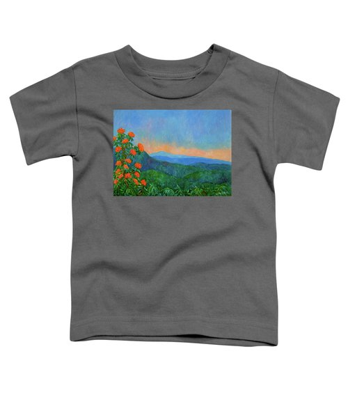 Blue Ridge Morning Toddler T-Shirt