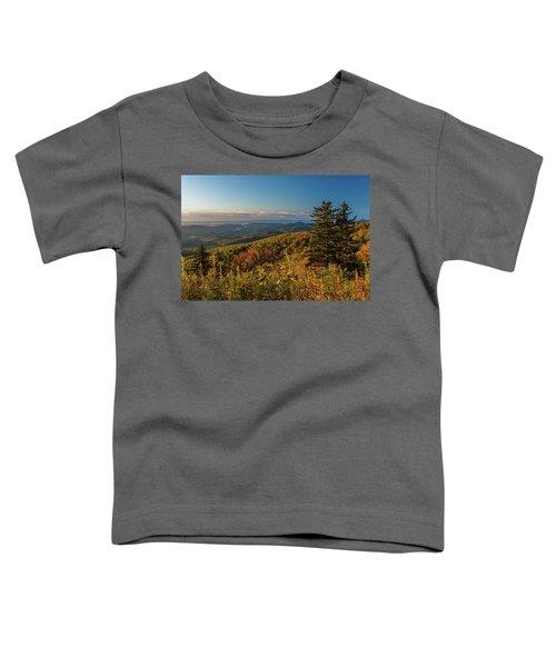Blue Ridge Mountain Autumn Vista Toddler T-Shirt