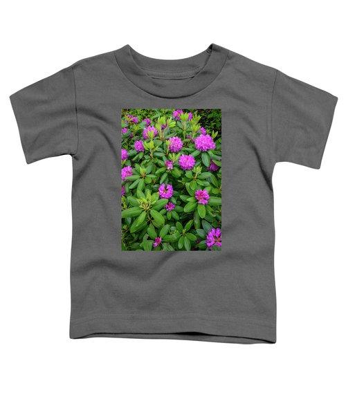 Blue Ridge Mountains Rhododendron Blooming Toddler T-Shirt