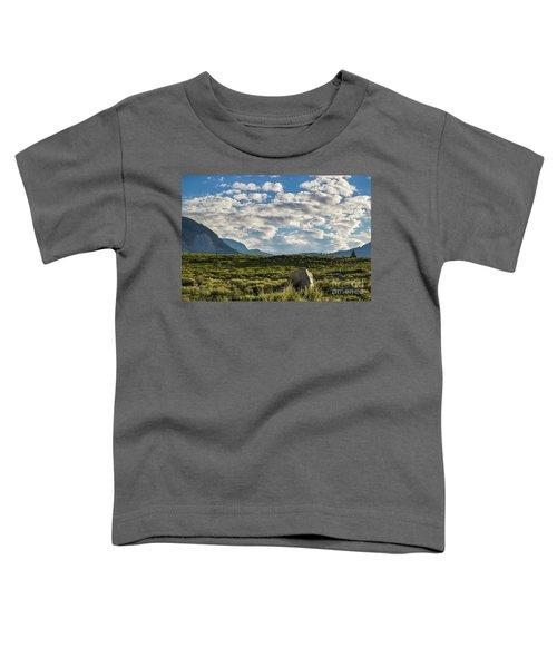 Blue Sky Monmouth  Toddler T-Shirt