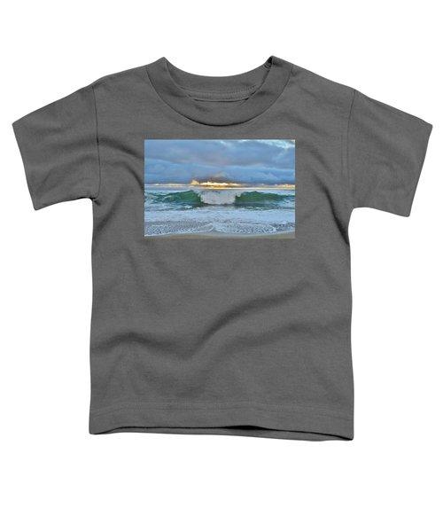 Blue Skys 2016 Toddler T-Shirt