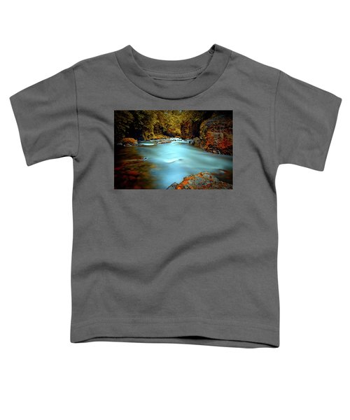 Blue Water And Rusty Rocks Toddler T-Shirt