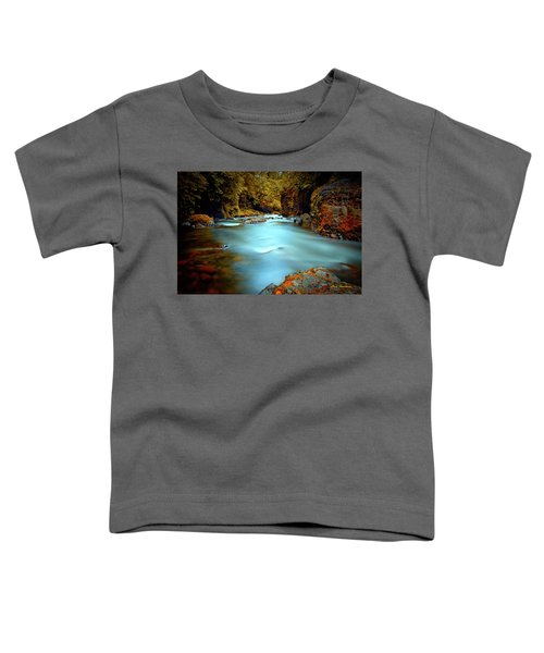Blue Water And Rusty Rocks Signed Toddler T-Shirt
