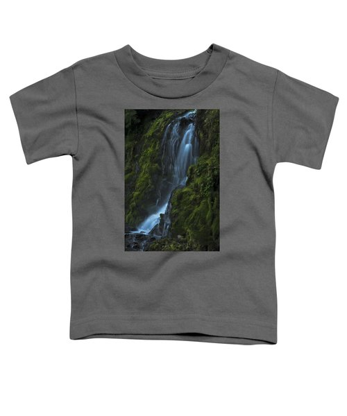 Blue Waterfall Toddler T-Shirt