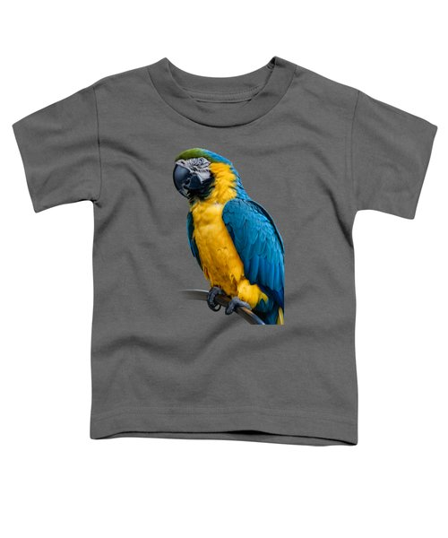 Blue Yellow Macaw No.1 Toddler T-Shirt