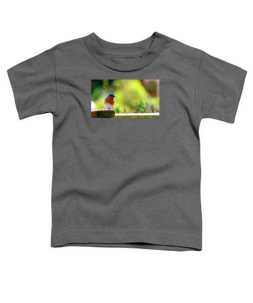 Bluebird Toddler T-Shirt