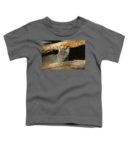Bobcat Hiding In A Log Toddler T-Shirt