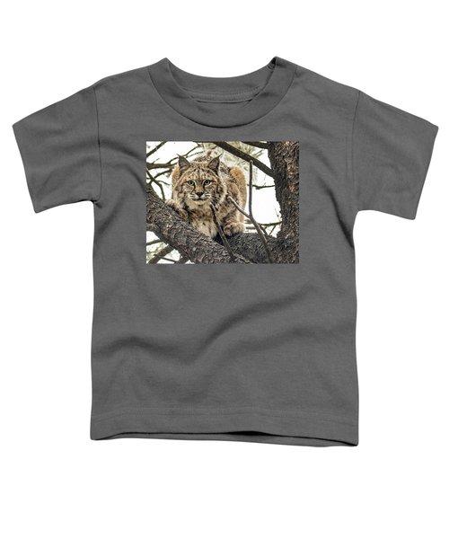 Bobcat In Winter Toddler T-Shirt