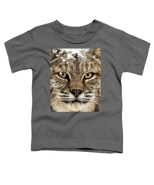 Bobcat Whiskers Toddler T-Shirt
