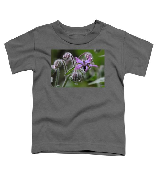 Borage Umbrella Toddler T-Shirt