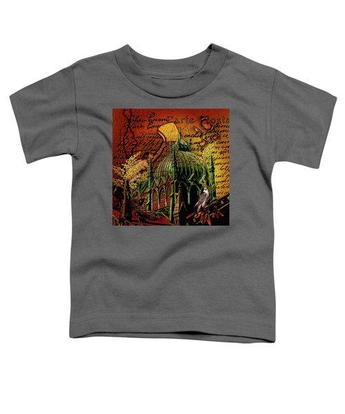Boston Birds....dark Toddler T-Shirt