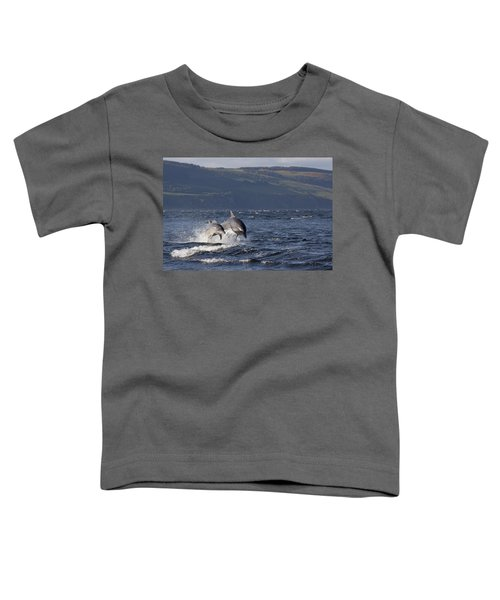 Bottlenose Dolphins Leaping - Scotland  #37 Toddler T-Shirt
