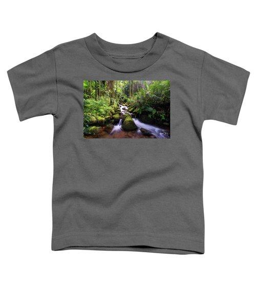 Boulder Creek Falls Toddler T-Shirt