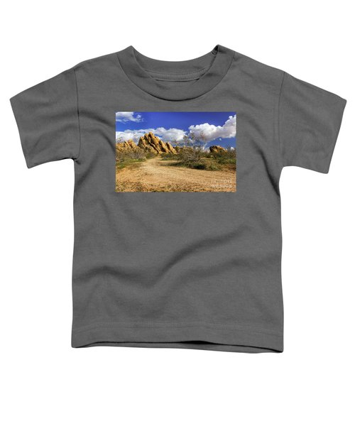 Boulders At Apple Valley Toddler T-Shirt