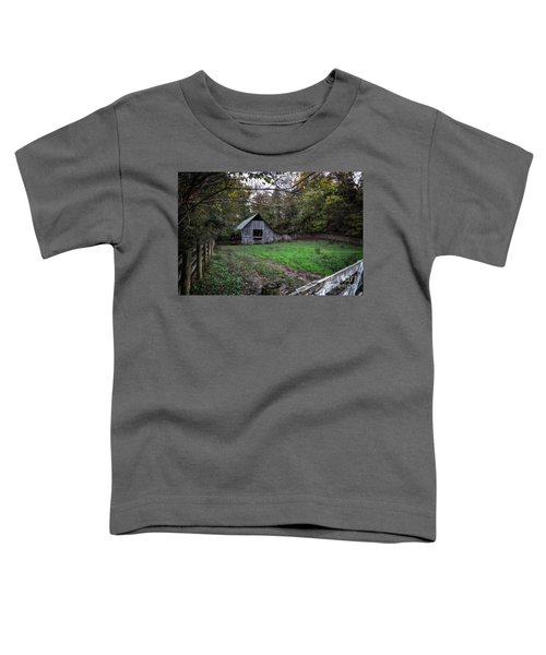 Boxley Valley Toddler T-Shirt