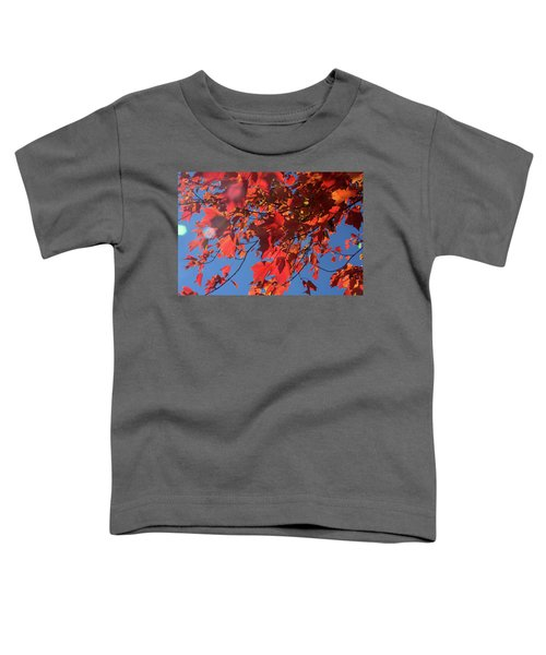 Branches Of Red Maple Leaves On Clear Sky Background Toddler T-Shirt