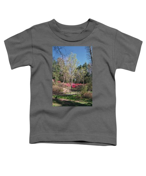 Bridge Walkway Toddler T-Shirt