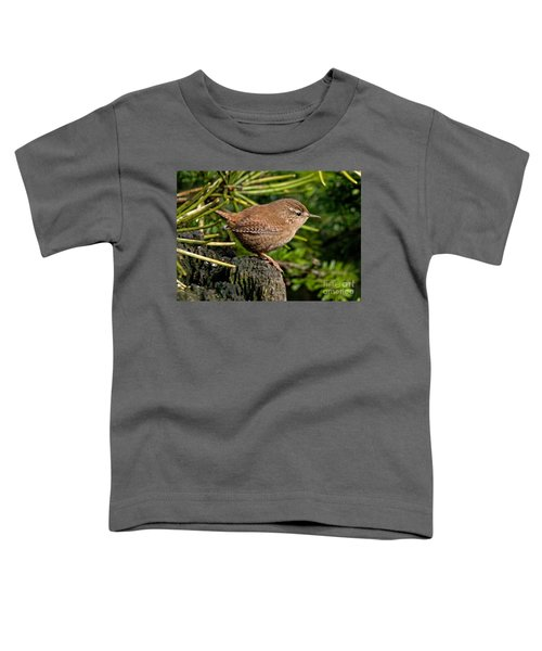 British Wren Toddler T-Shirt