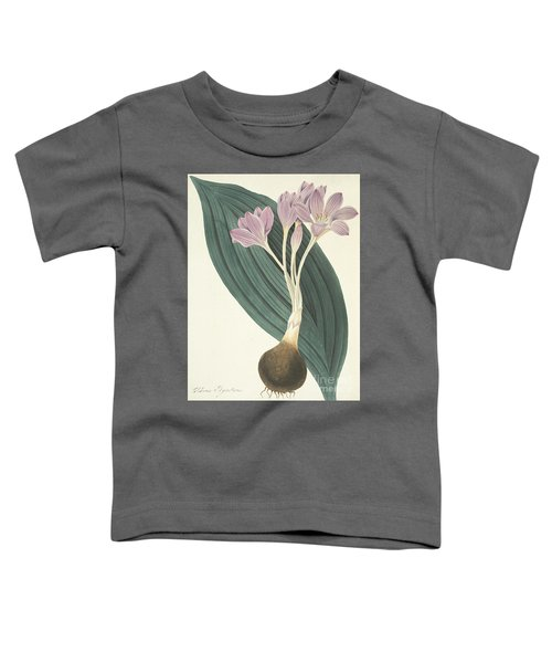 Broad-leaved Meadow Saffron Toddler T-Shirt