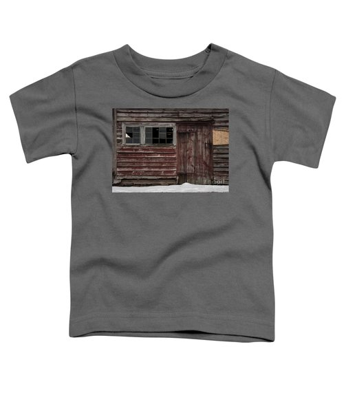 Broad Side Of A Barn Toddler T-Shirt
