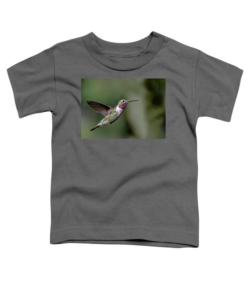 Broad-tailed Hummingbird Male Toddler T-Shirt