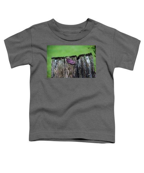 Brock's Leaf Toddler T-Shirt