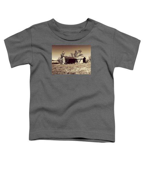 Broken Homestead Toddler T-Shirt