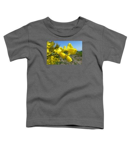 Broom In Bloom 4 Toddler T-Shirt