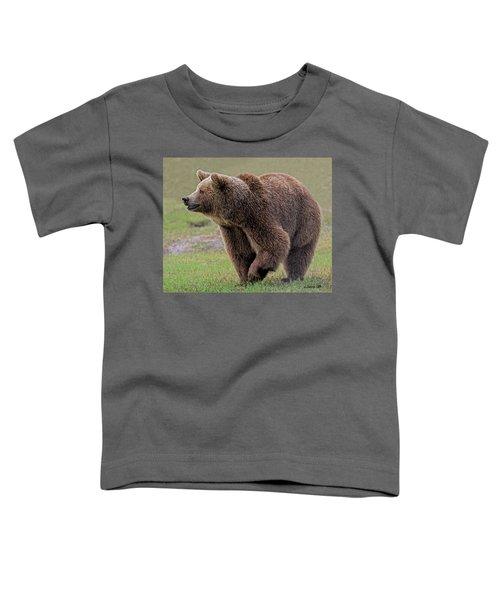 Brown Bear 14.5 Toddler T-Shirt