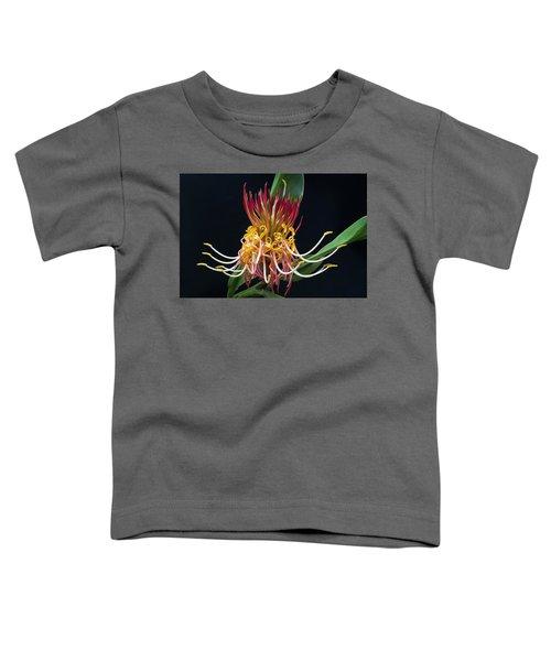 Brownea Macrophylla Tropical Flower Toddler T-Shirt