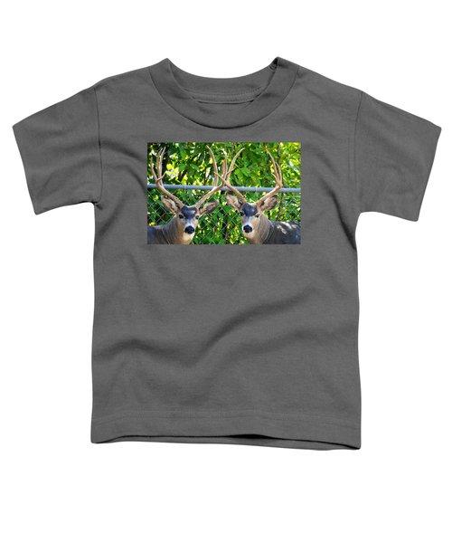 Buck Eyes Toddler T-Shirt