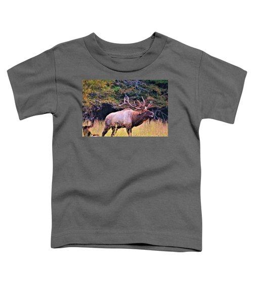 Bull Calling His Herd Toddler T-Shirt